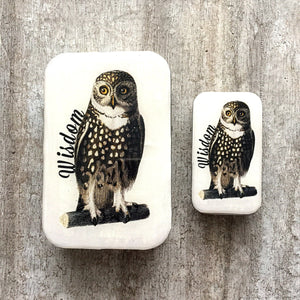 Wise owl tin