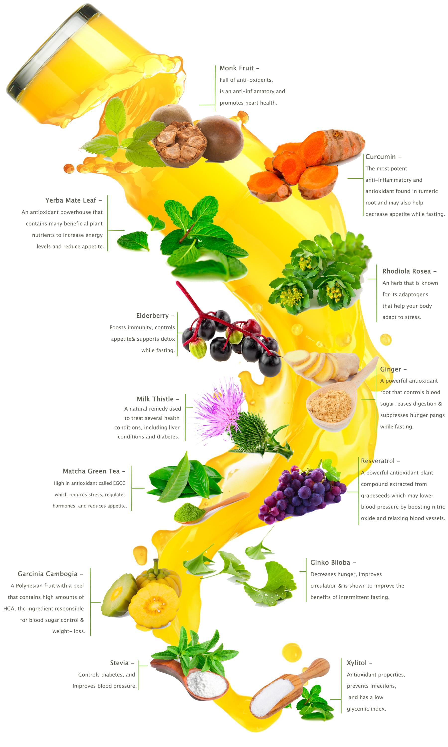 Herbs To Support Fasting