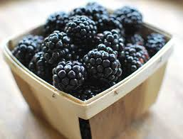 Organic Fresh Blackberries