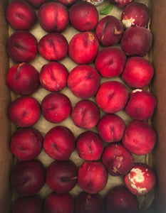 Organic White Flesh Nectarines