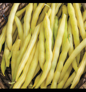 Organic Yellow Wax Beans