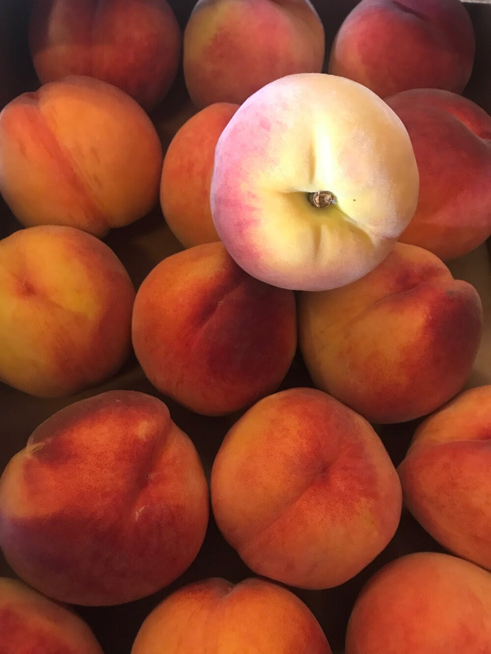 Organic Suncrest Yellow Peaches
