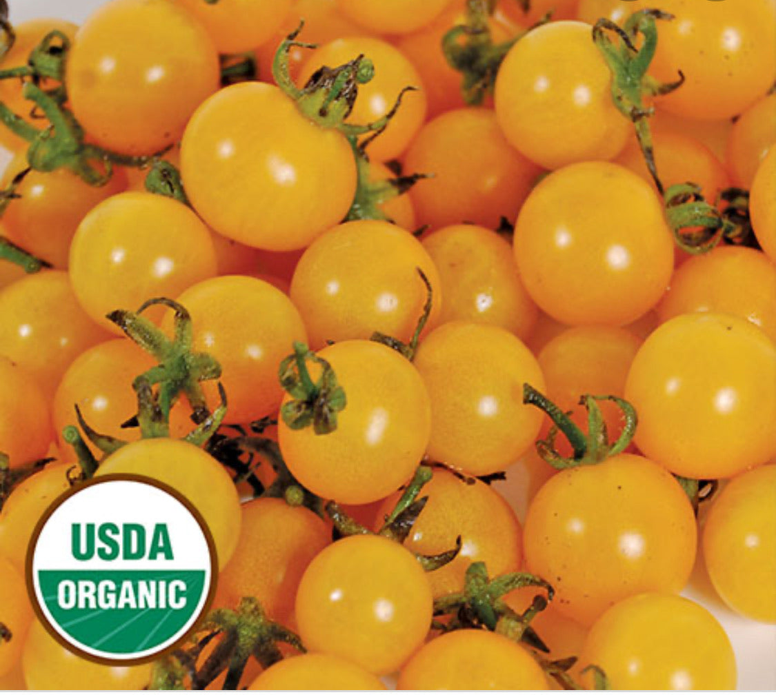 Organic Yellow Cherry Tomatoes