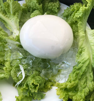 King's Mozzarella