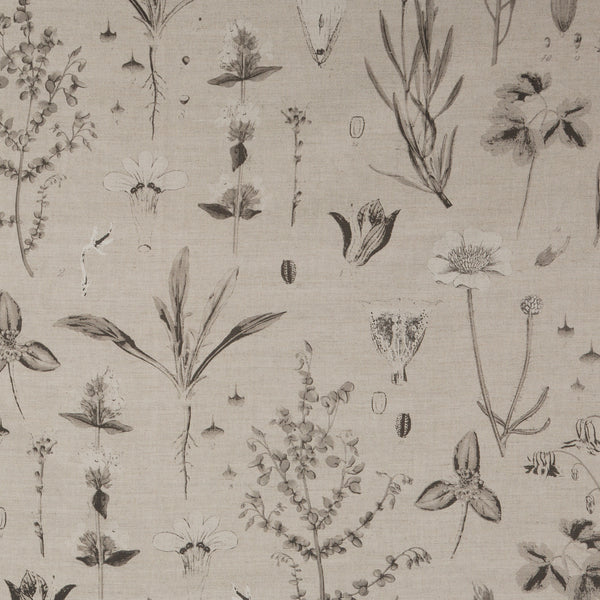 Botanical in Charcoal | The Kew Fabric Collection | Lorfords