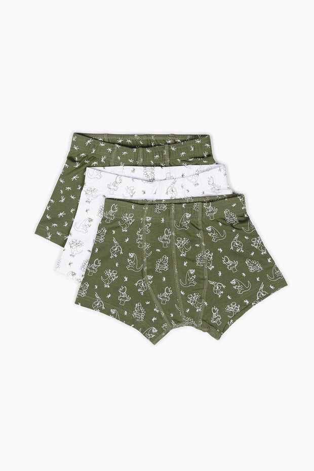 Fun Dinos Underwear 3 Pack - Shop Organic kids clothing, sheets, bedding, pyjamas, underwear & more