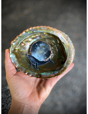 whale moon shell abalone resin pour art