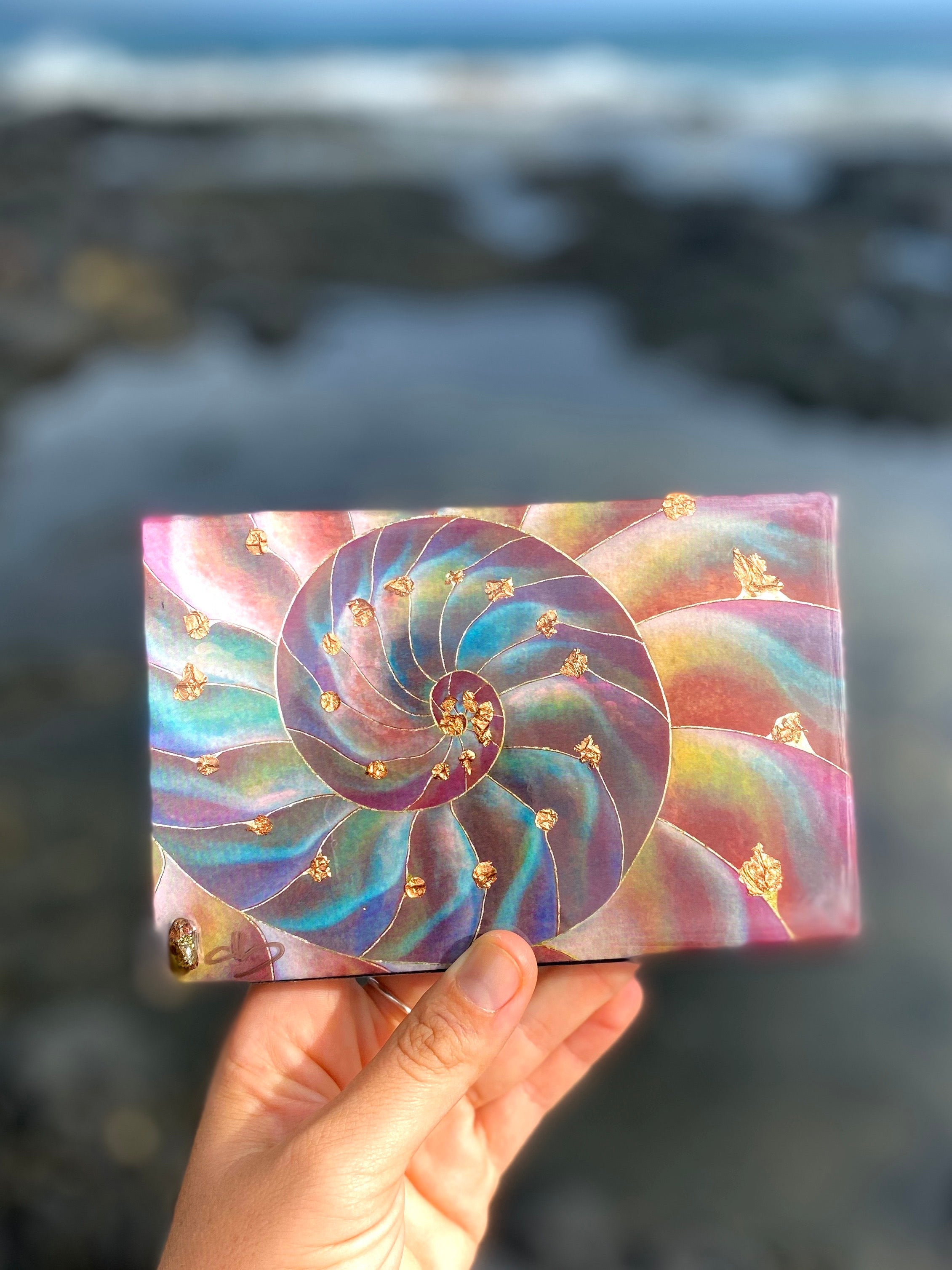 Nautilus Resin