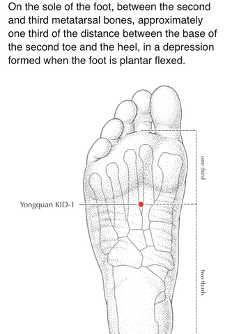 Yongquan acupressure point