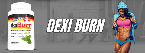 Dexi Burn (USA Import) - Stacker 2 • 120 capsules  (120 servings) • Afslanken & Probiotica - banner