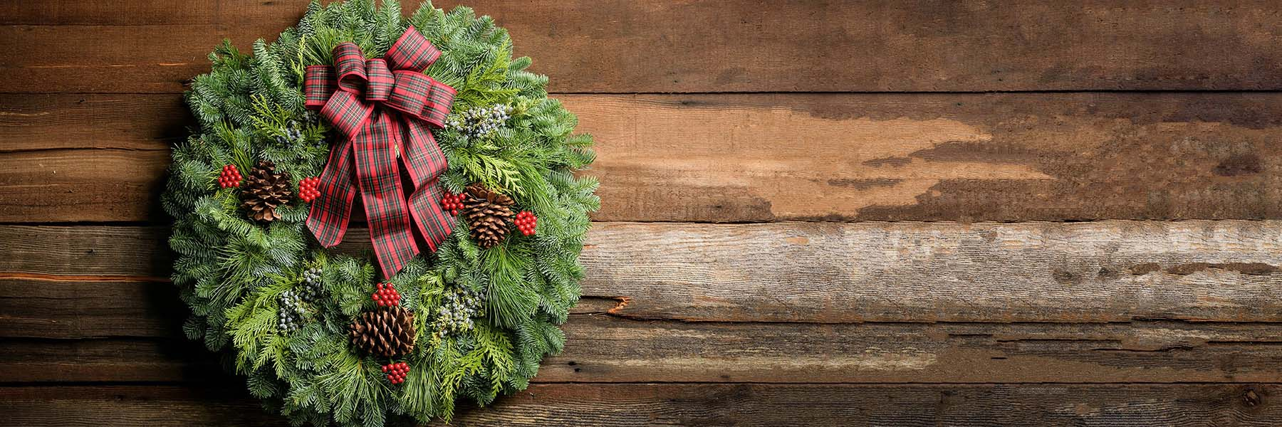 Holly Wreaths