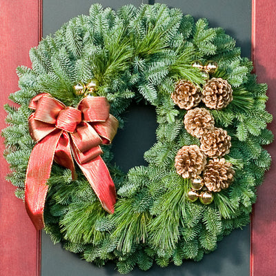 Fresh Evergreen wreath of noble, pine, pine cones, gold ornament clusters and shimmery golden-red bow close up