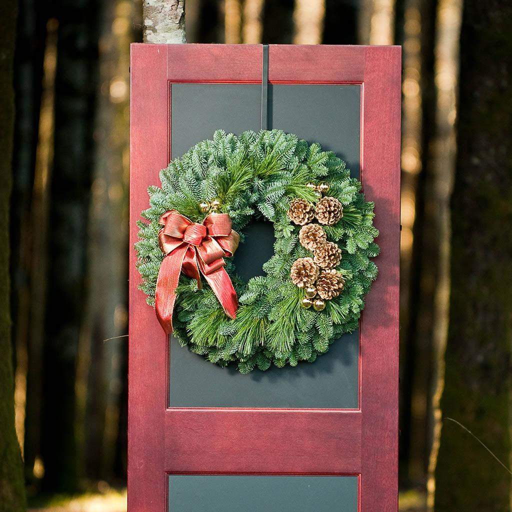 Fresh Evergreen wreath of noble, pine, pine cones, gold ornament clusters and shimmery golden-red bow on red and grey door