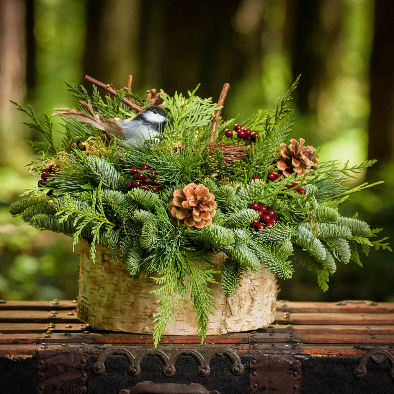 Fresh centerpiece in birch wrapped tin with pine cones, berries and chickadee and birds nest up close