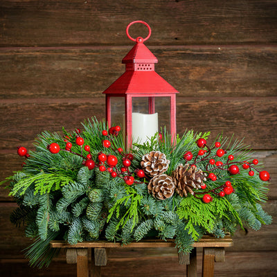 Centerpiece of noble fir, cedar, red berry branches, frosted pine cones, red LED lantern