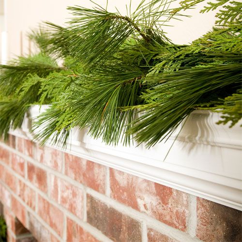 Fresh mixed garland lush combination of red and incense cedar and white pine.