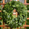 Northwest Salal and Beargrass Wreath