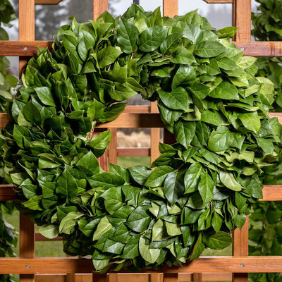 Hand picked fresh salal wreath close up