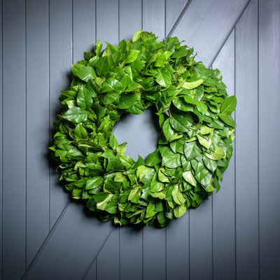 Hand picked fresh salal wreath on wooden background