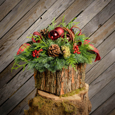 Fresh evergreen centerpiece with red ornament and berries and a plaid bow in a bark basket with wood plank background