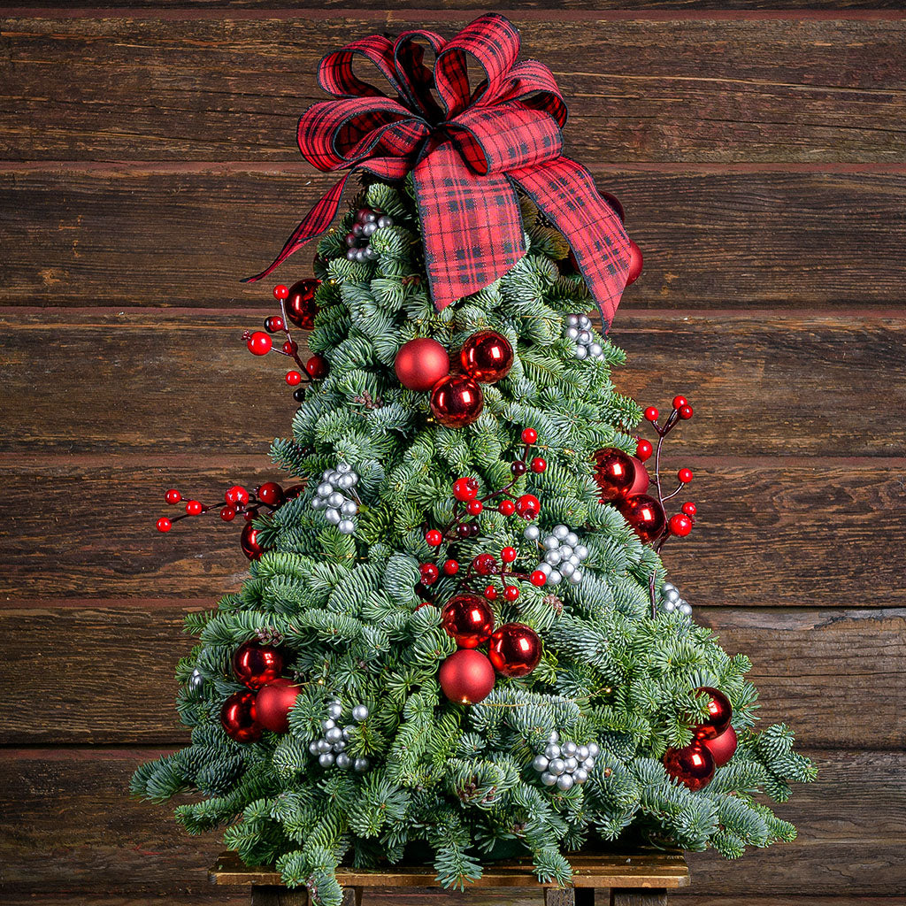 Assembled tree of noble fir,red ornaments, silver berries, red berry branch and a red and black tartan bow