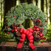 Christmas wreath fir, pine with pine cones red ball clusters branches lightly dusted touch of frost red globes and red bow