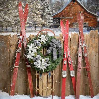 Christmas wreath noble fir pine with 4 white poinsettia flowers 4 of silver balls pine cones near fence on sled with skis