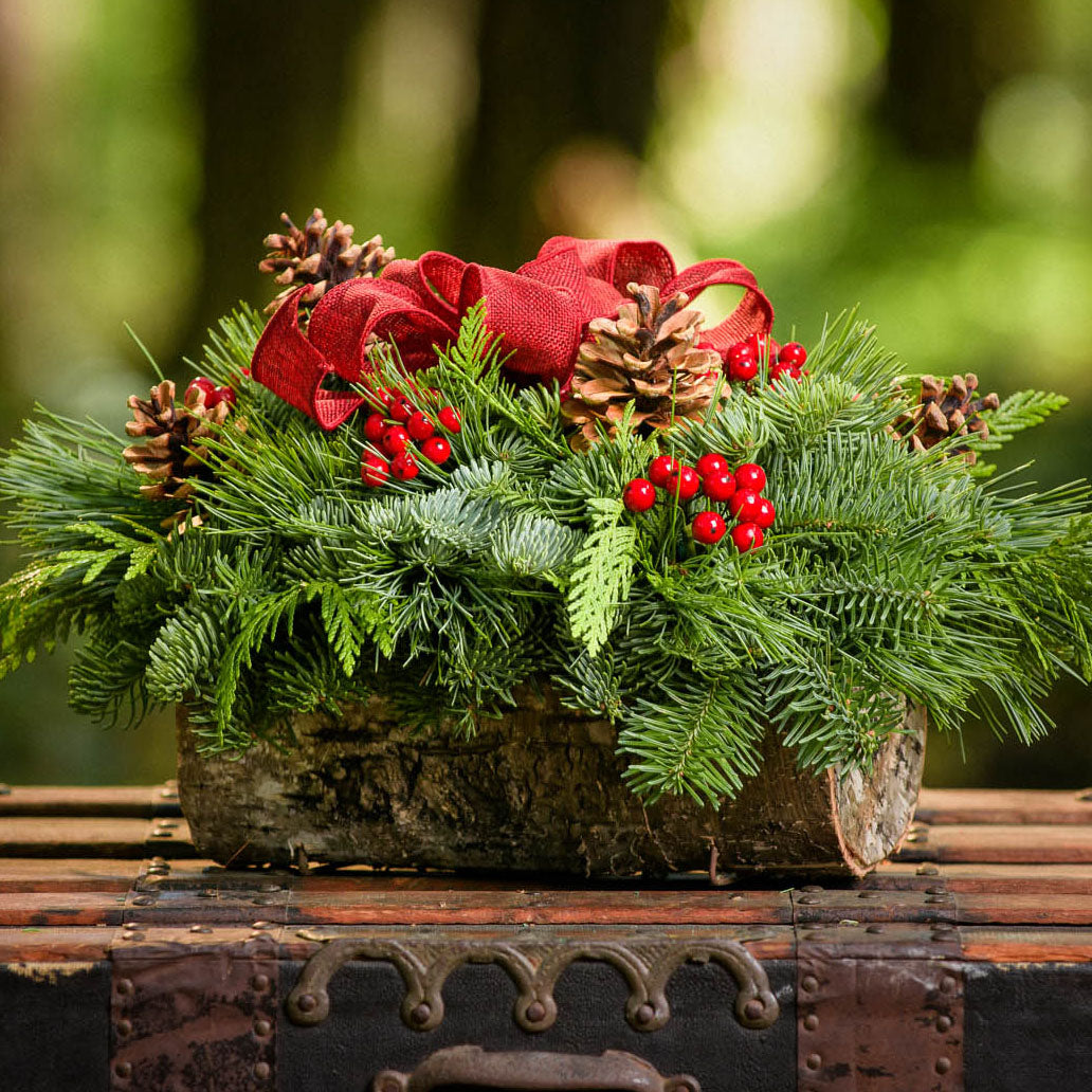 Holiday centerpiece in a bark log with pine cones, red berries and a red burlap bow on a wooden chest up close