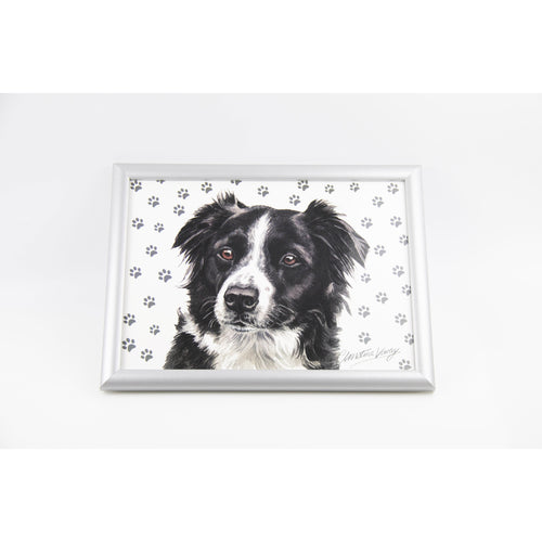 Border Collie Lap Tray