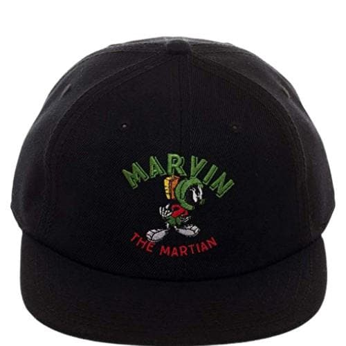 LOONEY TUNES MARVIN THE MARTIAN DAD HAT