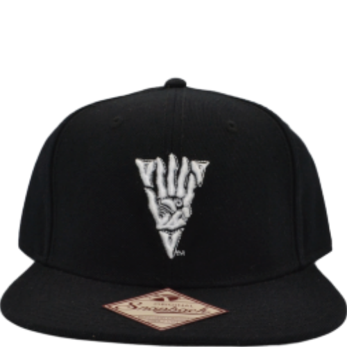 THE ELDER SCROLLS SNAPBACK HAT