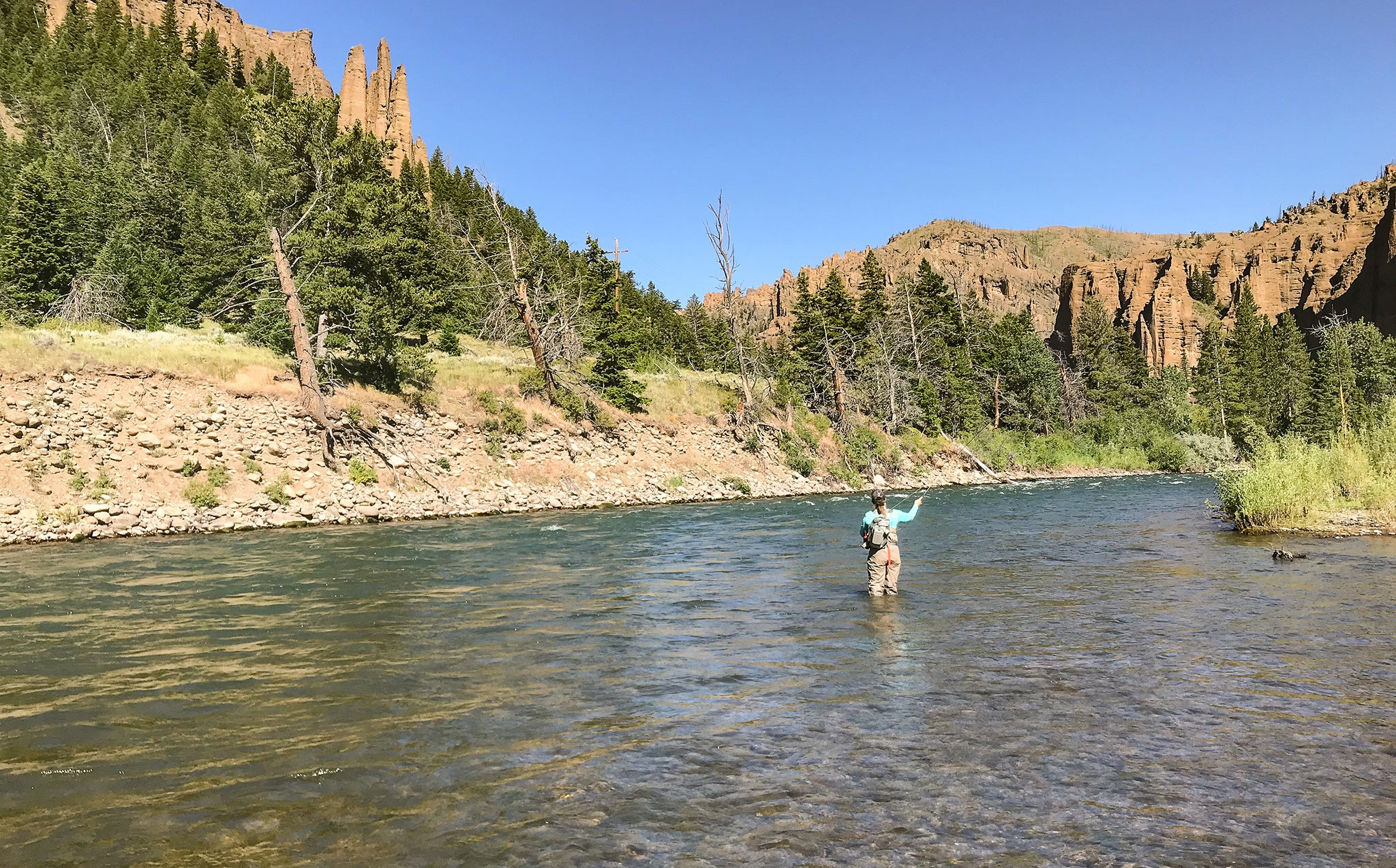 fly fishing in wyoming, Yellowstone national park, Cody wyoming