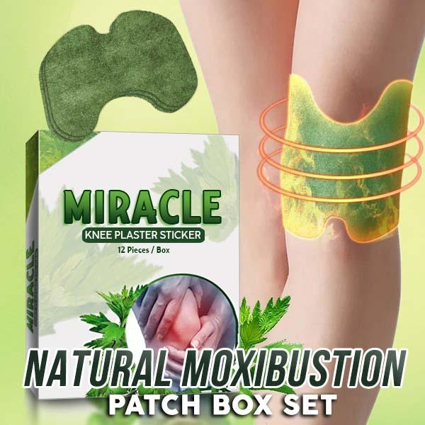 Natural Moxibustion Patch Box Set