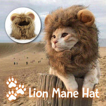 Load image into Gallery viewer, Lion Mane Hat