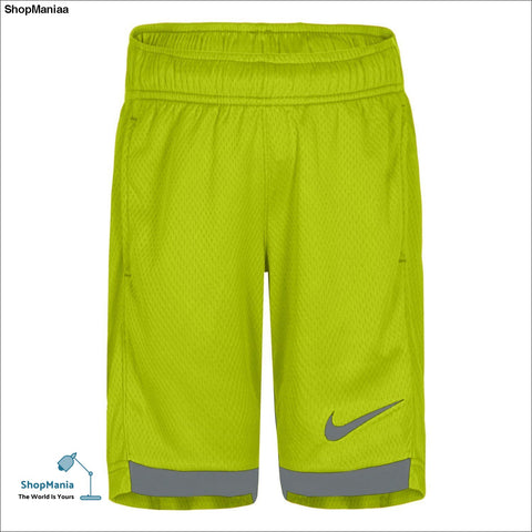 Boys 4-7 Nike Trophy Shorts