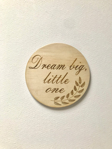 """Dream Big Little One"" disc"