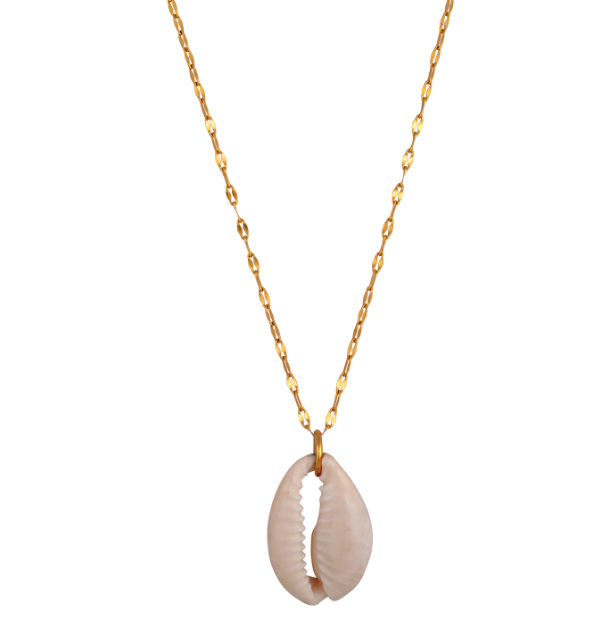 The Dainty Cowrie Chain Nacklace