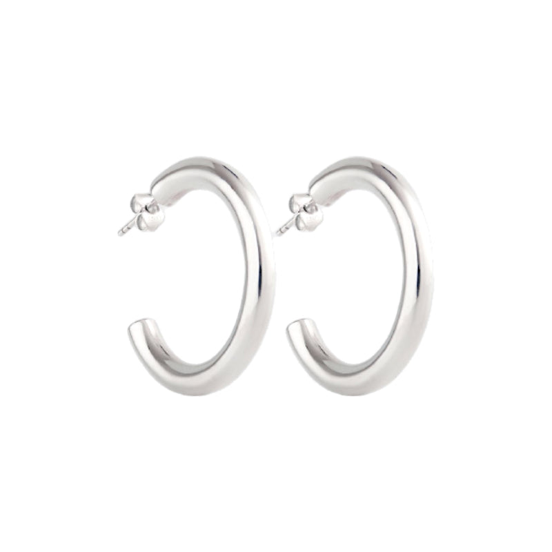 Lidia Small Silver Earrings