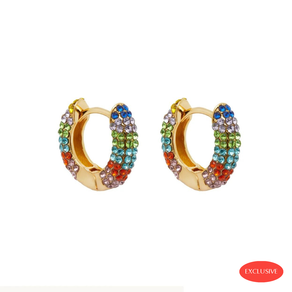Rainbow Hoops Earrings