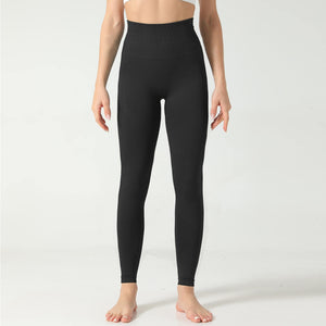 Hummingbird Honeycomb Seamless Leggings - Black