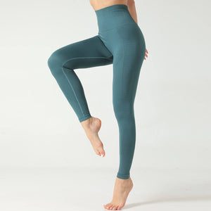 Hummingbird Honeycomb Seamless Leggings - Green