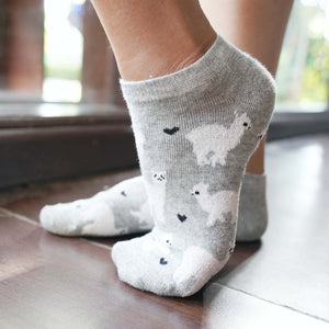 A Girl Wearing Hummingbird Llama Alpaca Cotton Ankle Socks (5 Colors) - Grey