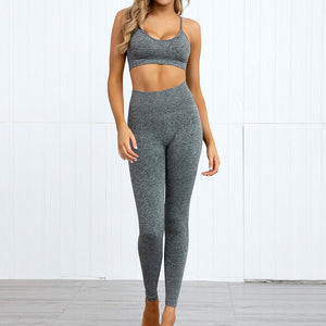 Hummingbird Pastel Seamless Leggings Set B - Heather Grey comes with a crop tank top sports bra and a pair of high waisted leggings. Individual items are available for mixing and matching. Crop tank top sports bra is low cut and has adjustable spaghetti straps. A pair of leggings are high-rise with widened waistband that lies flat against your skin. Seamless fabrication reduces chafing during workout. This Pastel Seamless Leggings Set is a handy gym set for warm weather. Perfect for low impact workouts.