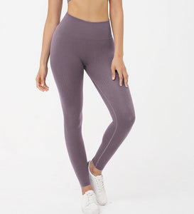 Hummingbird Ribbed Seamless High Waisted Leggings - Mushy Grape are available as individual items.