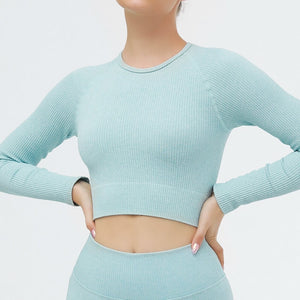 Hummingbird Ribbed Seamless Crop Top - Blue is available as an individual item.