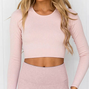 Hummingbird Ribbed Seamless Crop Top - Peach is available as an individual item.