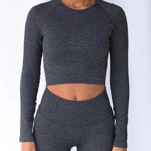 Load image into Gallery viewer, Hummingbird Ribbed Seamless Crop Top - Dark Grey is available as an individual item.