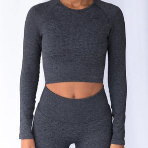 Hummingbird Ribbed Seamless Crop Top - Dark Grey is available as an individual item.