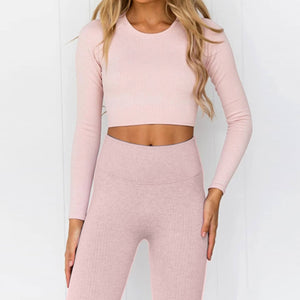 Hummingbird Pastel Ribbed Seamless Raglan Long Sleeve Sports Set - Peach containing crop top and a pair of cropped leggings that are made of breathable wicking fabric, perfect for workout and yoga at home or at the gym.
