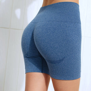 Hummingbird Seamless High Waisted Biker Shorts with underbutt panels - Navy